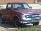 1993 Chevrolet S-10 in AL