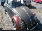 1958 Volkswagen Beetle in CO
