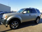2010 Ford Escape in TX