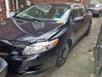 2010 Toyota Corolla under $4000 in New York