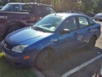 2005 Ford Focus in MN