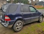 2003 Mercedes Benz ML-Class (Blue)