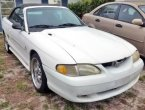 1998 Ford Mustang in FL