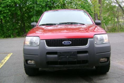 Photo #6: SUV: 2003 Ford Escape (Red)