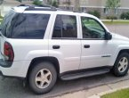 2006 Chevrolet Trailblazer in Michigan