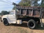 1977 Ford F-250 in TX