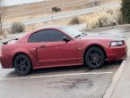 2003 Ford Mustang in NM