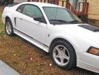 2000 Ford Mustang in AL