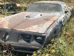 1979 Pontiac Trans AM in TX