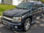 2003 Chevrolet Trailblazer in CO