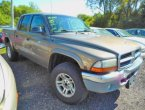 2001 Dodge Dakota - Lino Lakes, MN