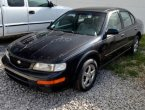 1996 Nissan Maxima in Kentucky