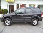 2005 Ford Escape (Black)