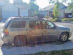 2007 GMC Envoy (Green)