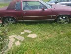 1984 Oldsmobile Cutlass in TN
