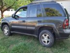 2003 Chevrolet Trailblazer in Michigan