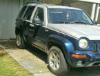 2002 Jeep Liberty (Silver and blue)