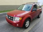 2009 Ford Escape in FL