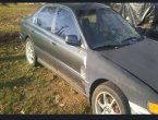 1996 Honda Accord (Gray)