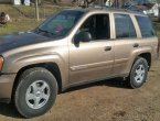 2003 Chevrolet Trailblazer in OH
