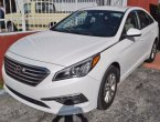2015 Hyundai Sonata under $14000 in Florida