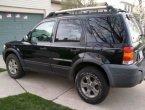 2005 Ford Escape in MI