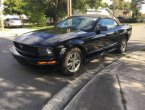 2005 Ford Mustang in FL