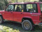 1989 Isuzu Trooper (Red)