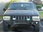 1995 Jeep Grand Cherokee (Black)